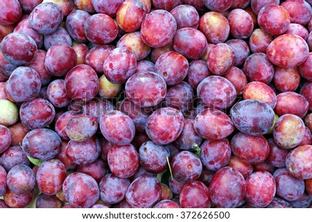 Background of the plurality of red plums fruit
