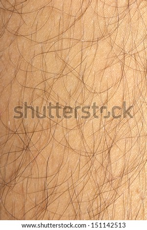 Background of the skin with hair. macro