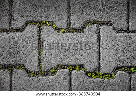 Background of two tone grunge rough brick floor with green grass in a brick niche - stock photo