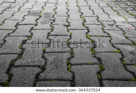 Background of two tone grunge rough brick floor with green grass in a brick niche with blur effect - stock photo