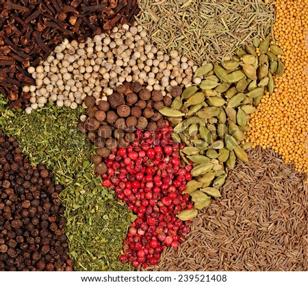 Background of various kinds of dry spices  - stock photo