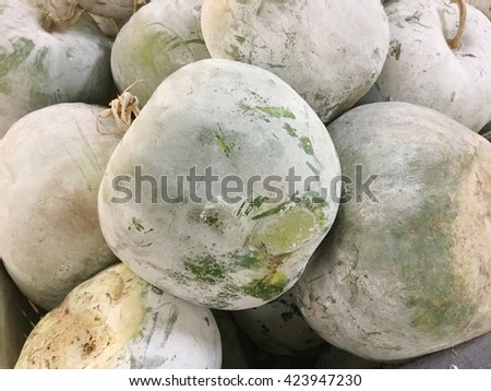 Background of white gourds, ready for sale - stock photo