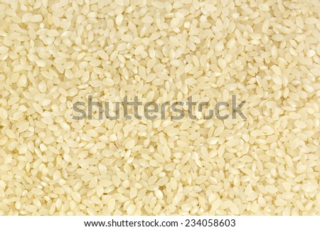 background of white polished rice seeds