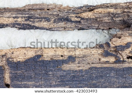 Background old wood rotten.