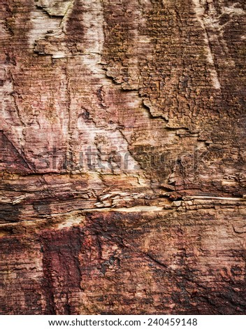 background or texture detail of old brown wooden boards