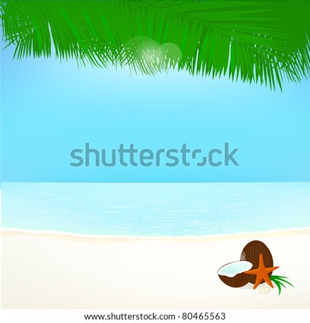 background palm leafs coconut, and star, summer vacation JPEG - stock photo