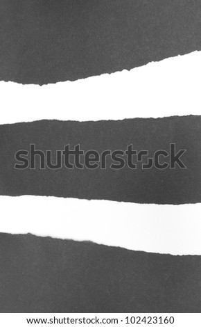 Background - Ripped Black Paper on White Background - stock photo