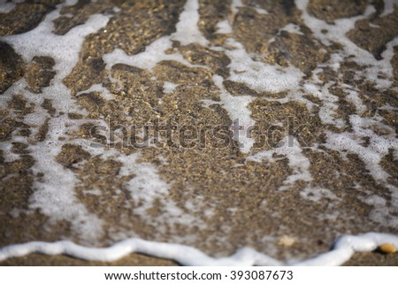 Background sand with shell and water The black sea