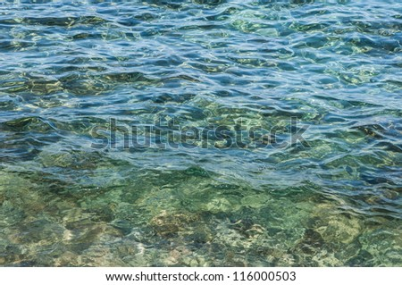 background seabed through the thickness of transparent water