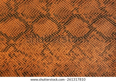 Background snake skin. - stock photo