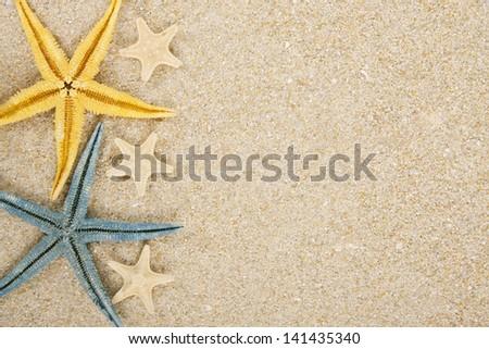 background starfish and sand - stock photo