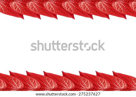 Background template with leaf red color isolated on white background.