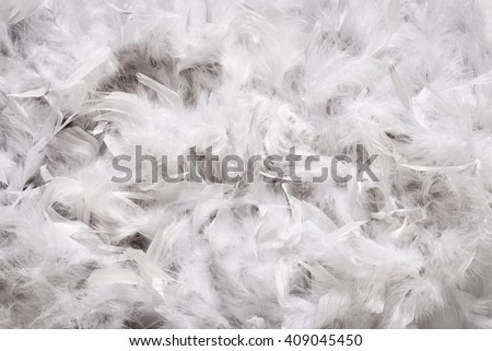 Background texture of a thick layer of soft white down feathers, probably from a duck or goose, viewed full frame from above - stock photo
