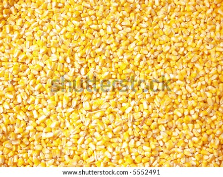 Background Texture of Loose Corn Kernels
