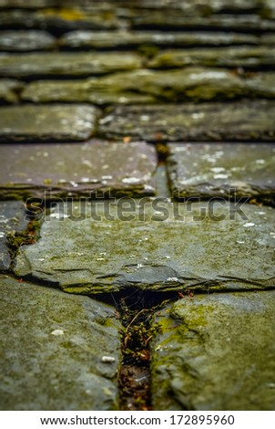 Background Texture Of Old Chipped Slate Roof Tiles (Shallow DoF) - stock photo