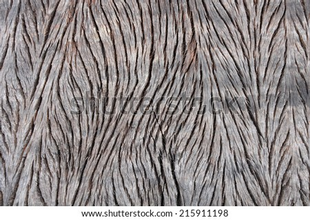 Background texture of sleeper wood.