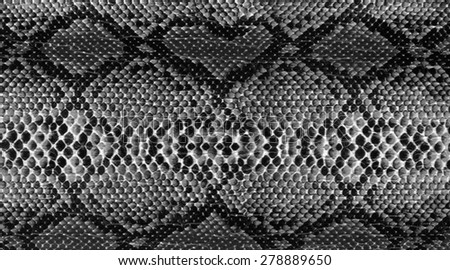 Background - texture of snake skin - stock photo