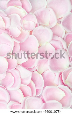 Background texture of soft pink rose petals symbolic of love and romance in a full frame view for anniversary, Valentines and Mothers day concepts