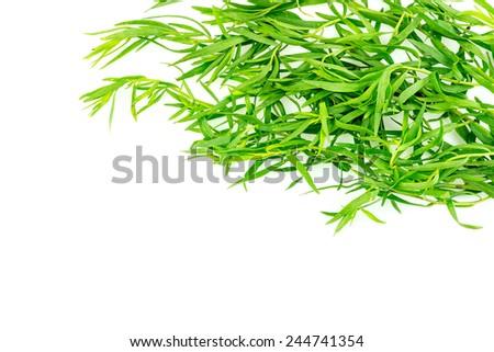 Background texture of tarragon herb seasoning - stock photo