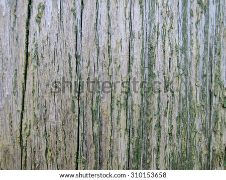 Background, texture of vertical planks with cracked green paint