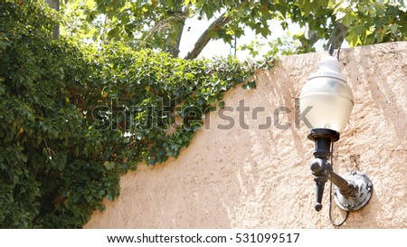 Background view of a lamp on an ivy wall