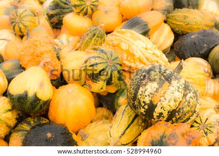 Background with a pile of pumpkins