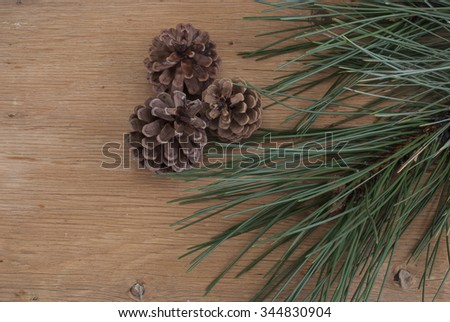 background with a pine branch on a wooden texture