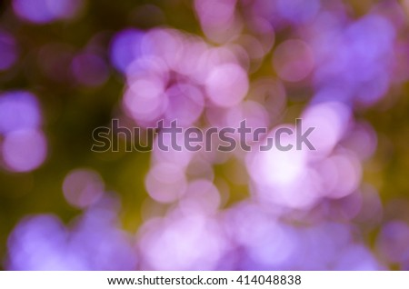 background with abstract blurred foliage and bright summer sunlight for your text or advertisment