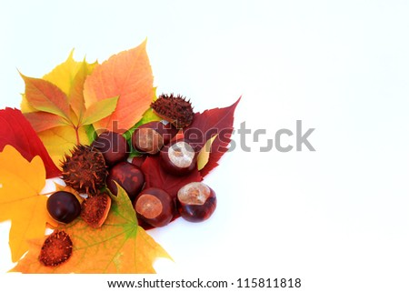 Background with autumn leaves and chestnuts