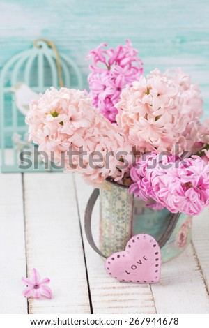 Background with fresh pink hyacinths in vase, little pink heart  on white wooden planks against turquoise wall. Selective focus.