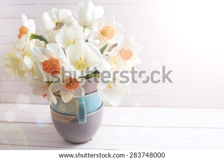 Background with fresh spring  pink daffodils  and white tulips flowers in vase in ray of light   on white wooden planks. Selective focus. Place for text. - stock photo