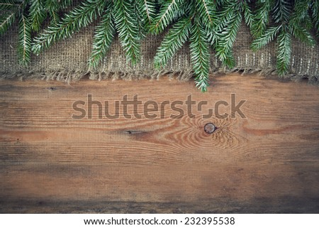 background with green christmas tree  - stock photo