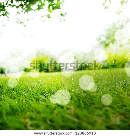 Background with Green Summer Landscape - stock photo