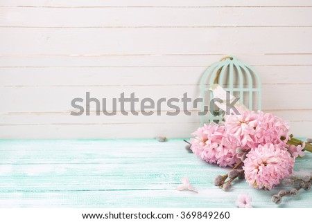 Background  with hyacinths,  willow flowers on turquoise painted wooden planks against white wall. Selective focus and empty place  for your text. - stock photo