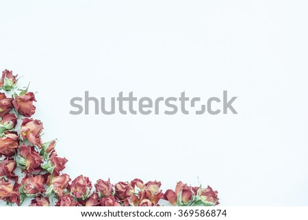 Background with red roses isolated on white with sample text. Frame.