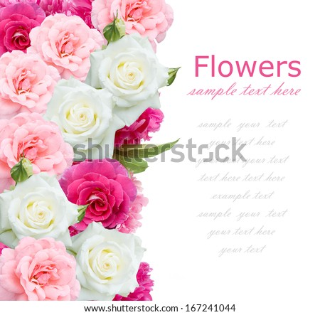 Background with roses and peony bunch isolated on white background