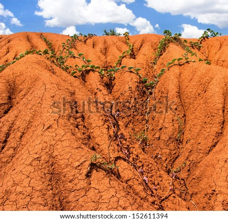 background with soil erosion  - stock photo