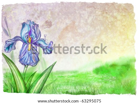 Background with texture and blooming lilac iris - stock photo