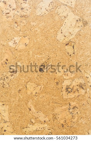 Background with texture of wood. Board wood with an interesting pattern. Exclusive floor covering is wood for interior design. A sample of the laminate flooring.