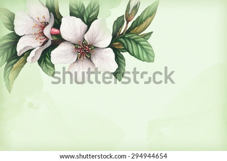 Background with watercolor cherry flowers. Perfect for greeting cards or invitations