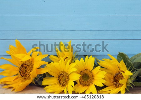 Background with yellow sunflowers on blue wooden boards. Space for text.