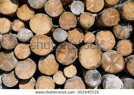 Backgrounds and textures: stack of wood, timber industry or nature abstract background - stock photo
