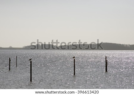 Backlight Danish Sea - Middelfart, Funen, Denmark. - stock photo