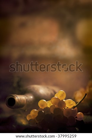 backlited wine bottle and grapes with copy space - stock photo