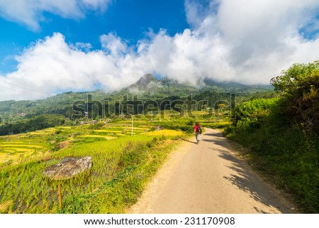 Backpacker exploring the stunning landscape on the mountains of northern Tana Toraja, South Sulawesi, Indonesia. Country road leading through the multi colored rice fields of Batutumonga. - stock photo