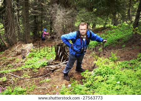 Backpacker man in mountain pine forest