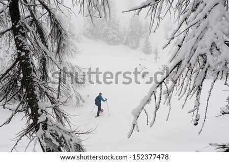 backpacker wearing snowshoes in the mountains with trees and fresh powder