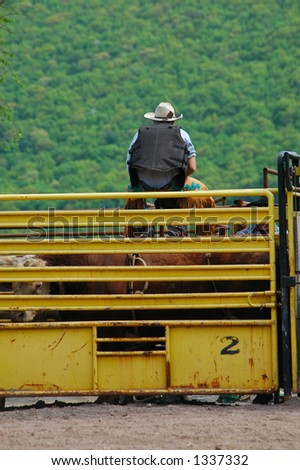 Backside of bull rider sitting on bucking chute - stock photo