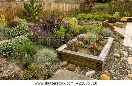 Backyard with fantastic landscaping, patio, fence and raised bed, drought resistant plants - stock photo