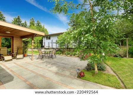 Backyard with walkout patio. Birch tree growing on backyard area - stock photo